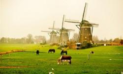 Waar is de horizon? - Hoe klinkt Nederland?